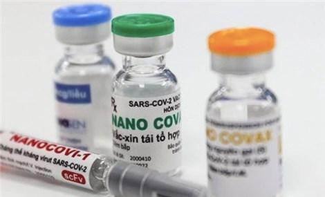 Không mở rộng thử nghiệm vaccine Nanocovax