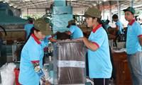 Campuchia kích hoạt gói hỗ trợ 100 triệu USD cho doanh nghiệp vừa và nhỏ