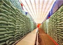 Nhập khẩu đường tăng vọt bất thường