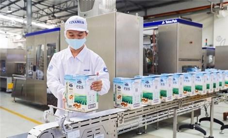 Xuất khẩu của Vinamilk tăng trưởng ổn định trong đại dịch