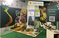 Vietnamese fruits attract visitors at Macfrut 2021: the Fruit & Veg Professional Show  in Italy