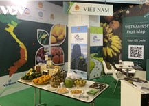 Vietnamese fruits attract visitors at Macfrut 2021: the Fruit& Veg Professional Show  in Italy