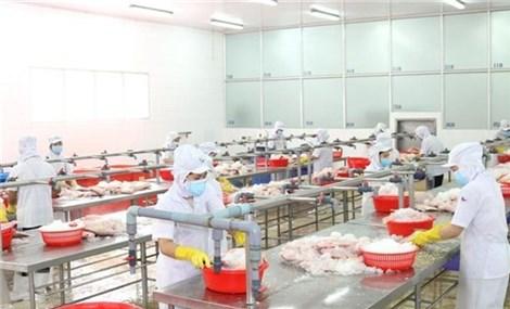Ninh Thuận hỗ trợ doanh nghiệp phục hồi sản xuất và an toàn phòng dịch