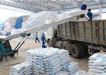 Campuchia là thị trường tiêu thụ phân bón lớn nhất của Việt Nam