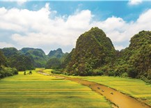 Exploring Tam Coc- Bich Dong in harvest time