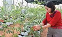 Nữ doanh nhân sáng tạo kinh doanh, tích cực làm thiện nguyện