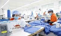 Chuyên gia quốc tế: Việt Nam có thể trở thành trung tâm sản xuất hàng đầu thế giới