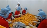 Bất chấp dịch Covid-19, nhiều lĩnh vực sản xuất tại Tiền Giang tăng trưởng tốt