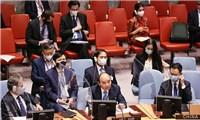 Việt Nam và Hội đồng Bảo an Liên hợp quốc: Việt Nam chủ động đóng góp tích cực và ngày càng thực chất