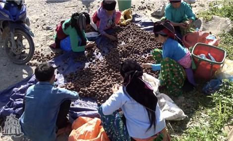 Chợ phiên Y Tý, Lào Cai nét đẹp văn hóa miền sơn cước