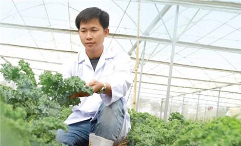 CEO 8X nghiên cứu dòng đồ uống thảo dược dành cho phái đẹp