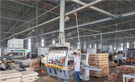 ĐBSCL khôi phục sản xuất sau giãn cách: Nhiều thách thức ngày trở lại