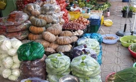 Cần Thơ: Giá rau cao gần ngang giá thịt heo hơi