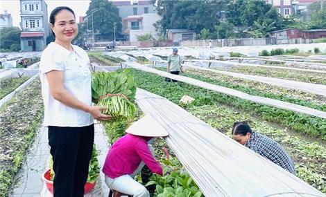 Làm giàu từ chuyên nghiệp hóa nghề trồng rau